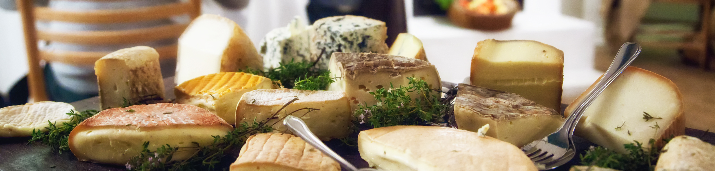 Käse, wie er bei einem Seminar verkostet wird